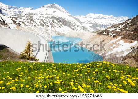 Spring dandelion flowers and Emosson hydroelectric Dam near village of Chatelard, Swiss on the border with France - stock photo