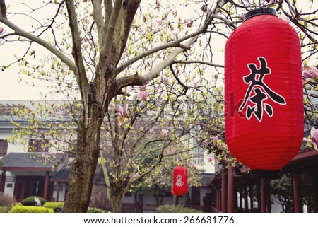 Spring day lantern with chinese character 'Tea' - stock photo