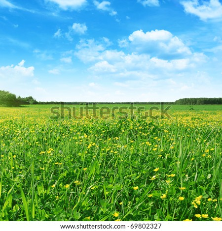 Spring field and blue sky. - stock photo