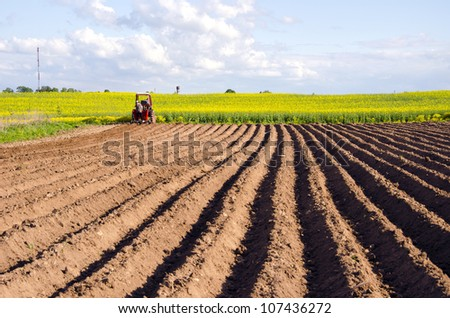 spring field with potato tillage and tractor - stock photo