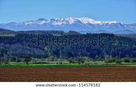 spring field with snow mountains - stock photo