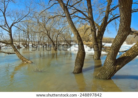 Spring flood. River Luzha, Kaluga Region of Russia - stock photo
