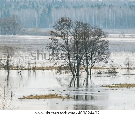 Spring flood. River Sukhodrev, Kaluga region, Russia - stock photo