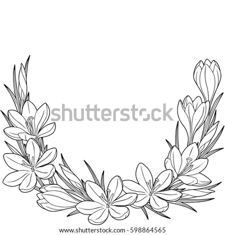 Royalty Free Stock Illustration Of Spring Flower Vignette Crocuses