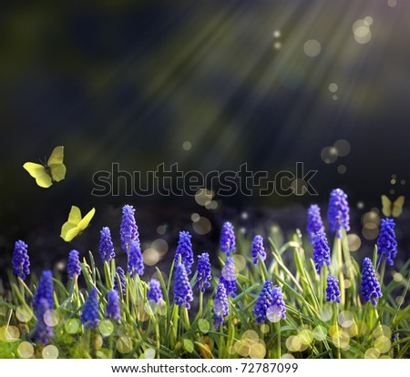 Spring flowering meadows - stock photo