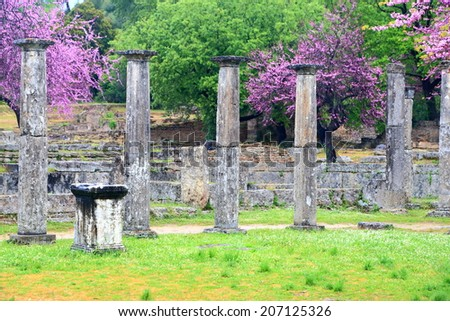 Spring flowers and ancient columns standing in the sanctuary of Zeus, Olympia, Greece - stock photo