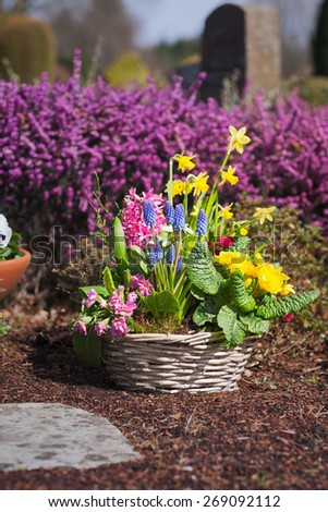 Spring flowers at cemetery in Germany. Grave with easter decoration. Shallow DOF, focus on flower pot - stock photo