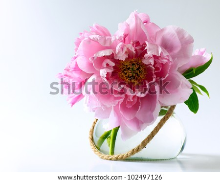 spring flowers in vase on white background - stock photo