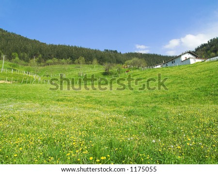 Spring flowers, landscape and a typical basque house