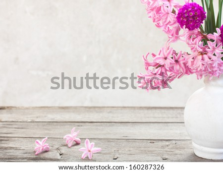 spring flowers on white background - stock photo