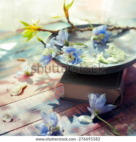Spring flowers on wooden dish set with a book near a window. Natural light setup, toned photo. - stock photo