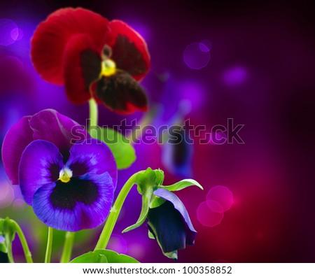 Spring Flowers Pansy over Black art border design - stock photo