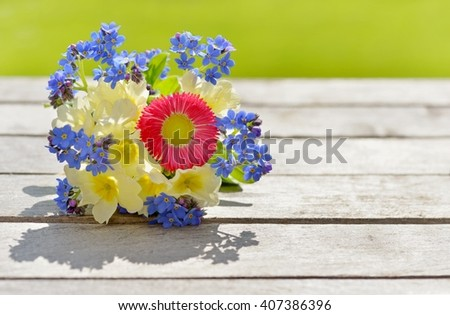 Spring flowers. Spring flowers background. Spring flowers on old wood. Spring flowers isolated on nature background. Spring flowers card with copy space. - stock photo