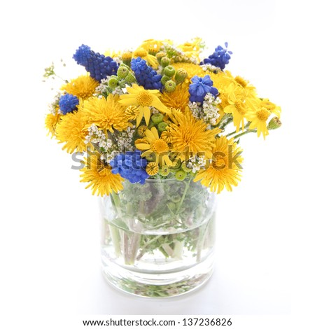 Spring Flowers with dandelion and muscari - stock photo