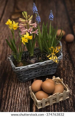Spring flowers with eggs for Easter - stock photo