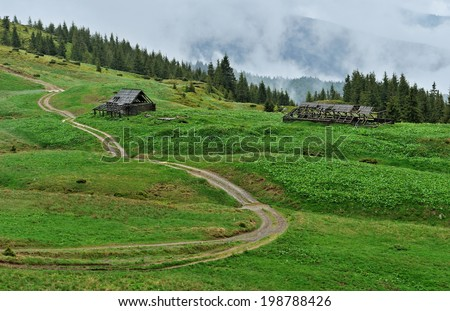 Spring fog in the Carpathian mountains in spring