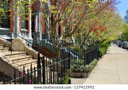 Spring Foliage in Boston Back Bay - stock photo