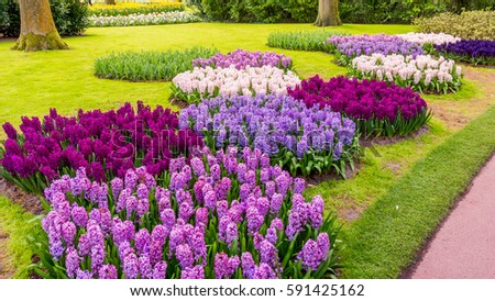 Spring Formal Garden. Beautiful Garden Of Colorful Flowers