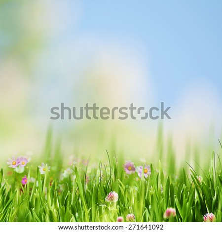 Spring garden, abstract natural landscape for your design - stock photo