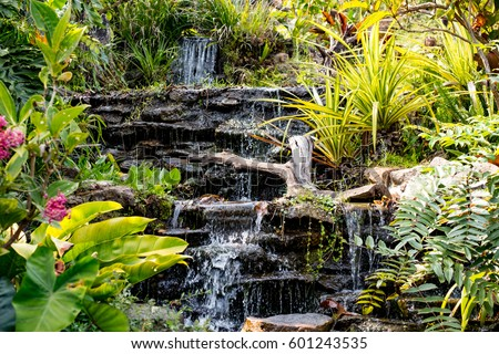 Spring Garden Waterfall Among The Green Tropical Plants Beautiful Flower