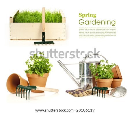 Spring gardening - Watering can, grass and garden tools on white - stock photo