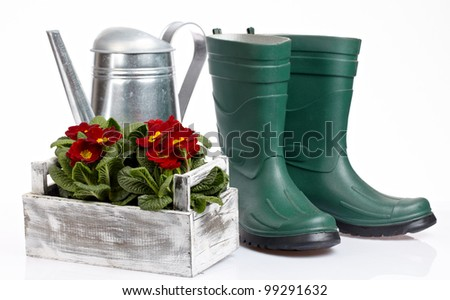 Spring gardening - Watering can, grass and garden tools on white