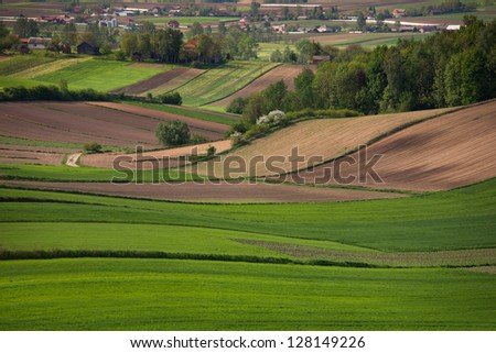 Spring green fields in southern Poland. - stock photo