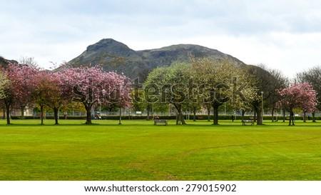 Spring in Meadows park, Edinburgh, with Arthurs seat view - stock photo