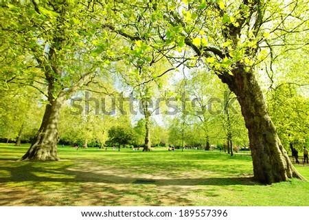 Spring in St James Garden, London, England  - stock photo