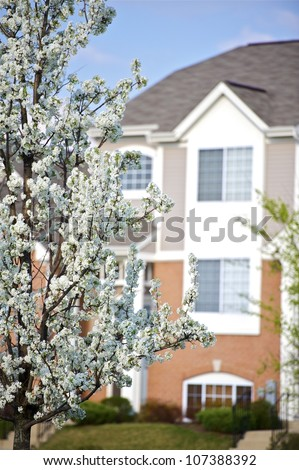 Spring in the City. Vertical Photography. Wild Plum Blossom (American Plum Tree) and Some Residential Building in the Background. - stock photo