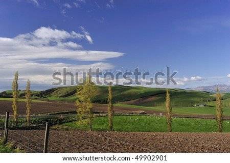 spring landscape and blue sky New Zealand - stock photo