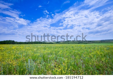 spring landscape beautiful clouds in the blue sky above boundless fields receding over the horizon - stock photo