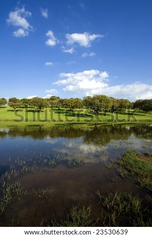 spring landscape - beautiful lake and green field