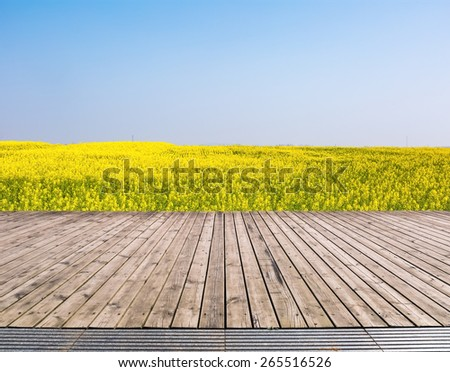 spring landscape of rape field with wooden floor , rapeseed flowers were yellowing the fields - stock photo