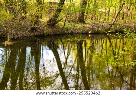 Spring landscape: river, trees, blue sky and white clouds
