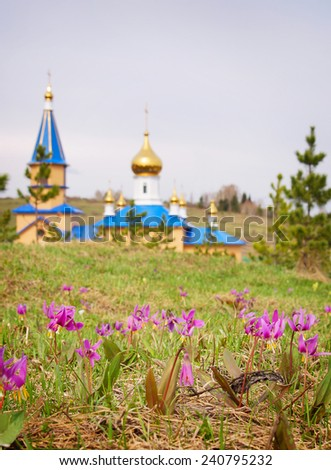 Spring landscape with first pink flowers and remote church - stock photo