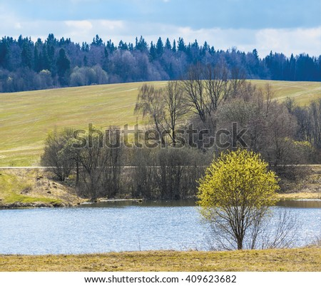 Spring landscape with flowering willow. Moscow region, Russia - stock photo
