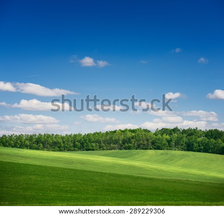 Spring landscape with green field and forest on a bright day with shadows of the clouds reflected on the ground, springtime - stock photo