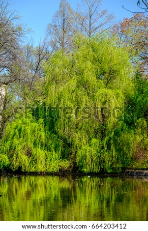 Spring landscape with the river and blue sky