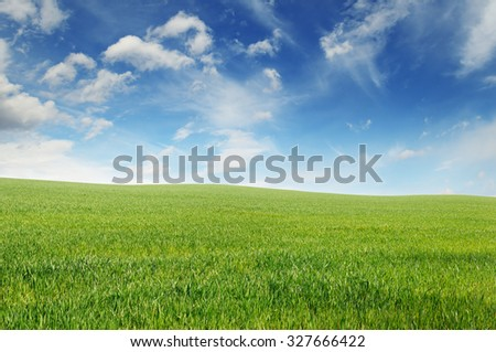 spring meadow and blue sky - stock photo