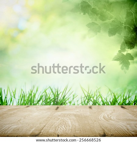 Spring meadow in morning sunlight with growing grass near the path for picnic - stock photo