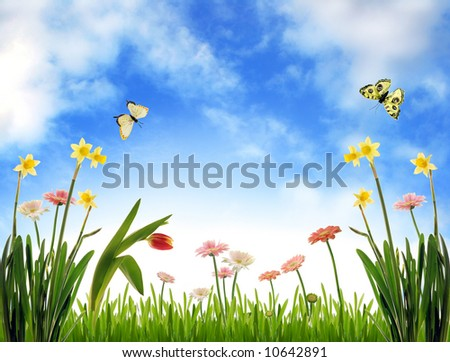 Spring meadow with flowers and blue sky - stock photo