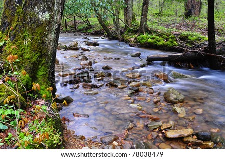 Spring, Middle Fork of Williams River, Rushing Mountain Stream, Monongahela National Forest, West Virginia, USA - stock photo