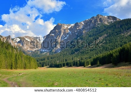 Spring mountain landscape. Small Valley Meadows in the Western Tatra Mountains.