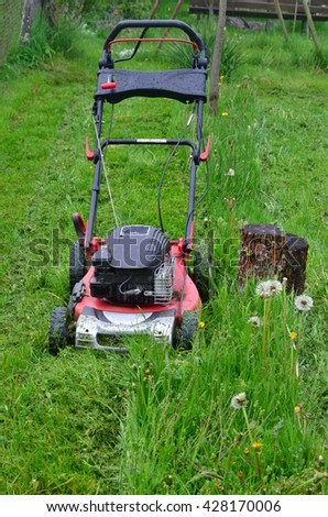 Spring mowing grass in the garden, south Bohemia, Czech Republic