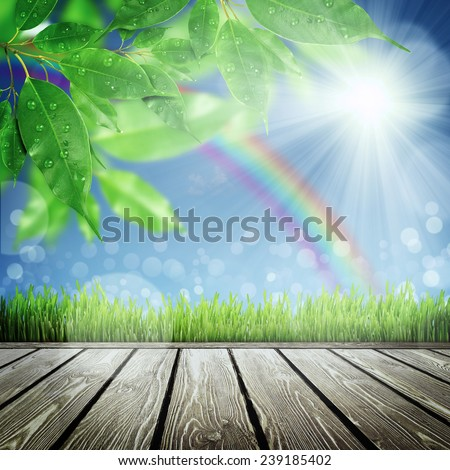 Spring nature background with grass - stock photo