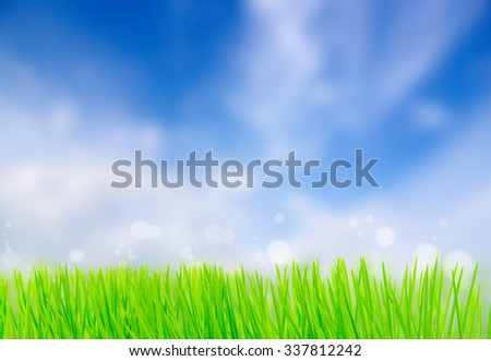 Spring nature background with grass and blue sky in the back - stock photo