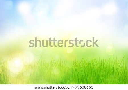 Spring nature background with grass and bokeh lights. Blue sky - stock photo