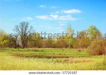 Spring oak and birch tree, lake, meadow and blue sky - stock photo