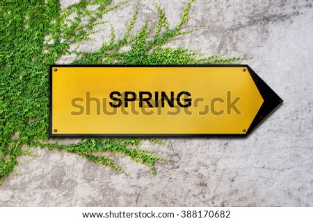 Spring on yellow sign hanging on ivy wall